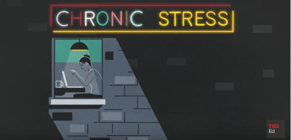 Vidste du det om hjernen og stress?